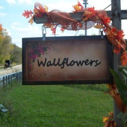 Wallflowers Design Studio